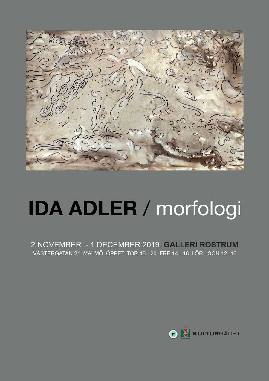Ida Adler, Morfologi